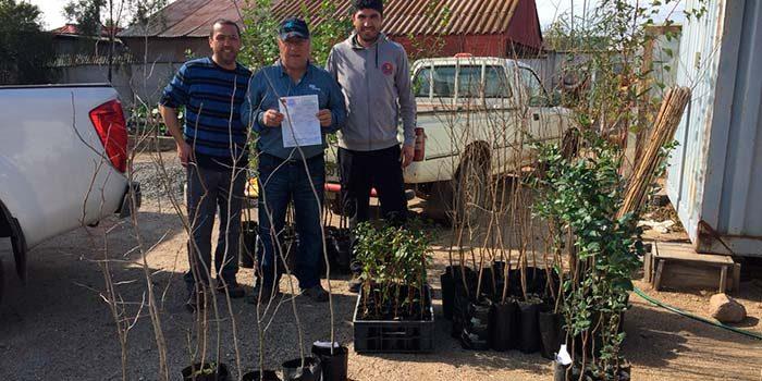 Conaf dona 40 árboles nativos al Hospital de Marchigüe