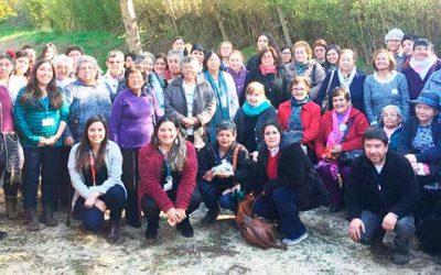 Hospitales de Peumo, Marchigüe, Litueche y Pichilemu potencian los grupos de autoayuda