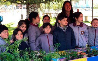 Huertos escolares y comunitarios en Marchigüe