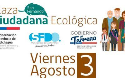 Más de 20 servicios públicos participarán de Gobierno en terreno en San Fernando