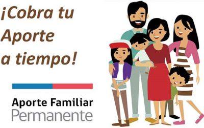 Más de 79 mil familias ya han recibido el Aporte Familiar Permanente