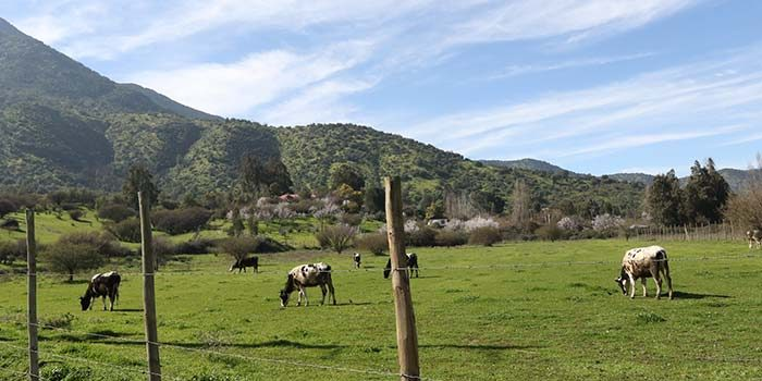 Pequeños Agricultores de la Región son beneficiarios de Proyecto de Adaptación al Cambio Climático