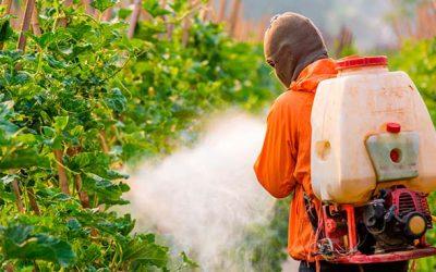 UOH estudiará presencia de pesticidas en alimentos consumidos en liceos de localidades urbanas y rurales de la región