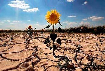 Los puntos clave para la Ley de Cambio Climático que Chile necesita