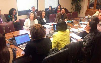 Académica de la UOH expone en Comisión del Senado sobre proyecto de ley sobre acoso sexual en la universidad