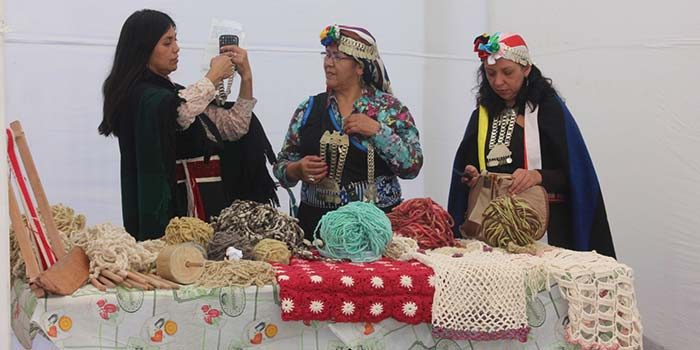 Ministerio de las Culturas invita a artistas visuales indígenas a postular al Tercer Encuentro de las Culturas