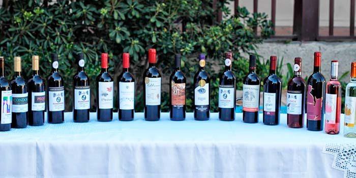 Pequeños productores vitivinícolas participan en cata y análisis de vinos