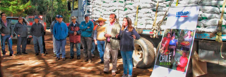 Indap OHiggins inicia segunda etapa de entrega de forraje a pequenios ganaderos