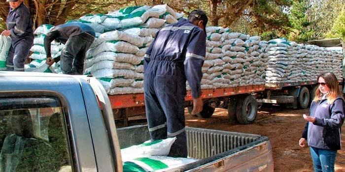 Indap O'Higgins inició segunda etapa de entrega de forraje a pequeños ganaderos