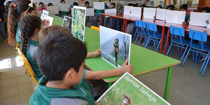Durante 2018 Pro O'Higgins fortaleció la educación ambiental en 30 escuelas de la región