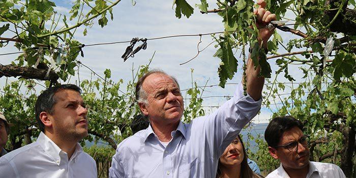 Intendente solicita decretar emergencia agrícola en 10 comunas de OHiggins