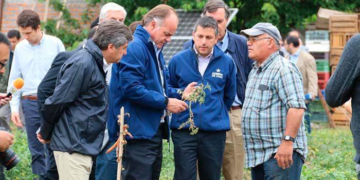 Intendente valora decisión de decretar zona de emergencia agrícola en 10 comunas de OHiggins