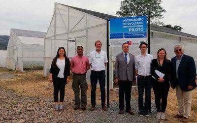 Investigadores franceses conocen proyecto Invernadero fotovoltaico semitransparente piloto de la UOH