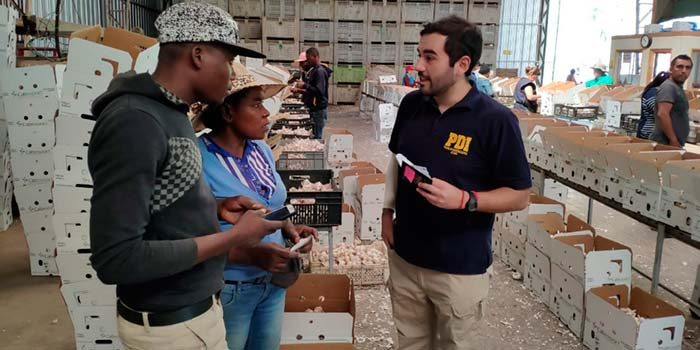 Detectives efectúan fiscalización a extranjeros en diferentes packing de la Región
