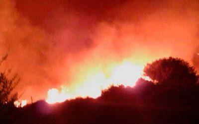 incendio navidad forestal