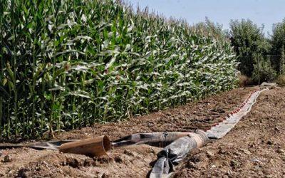 Incentivarán riego por manga para provechar mejor el agua