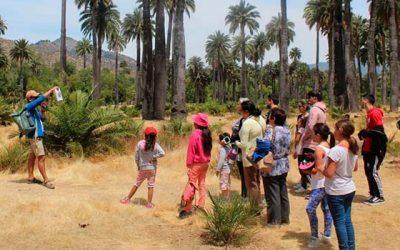 Inicia temporada alta del Programa Turismo Familiar en OHiggins