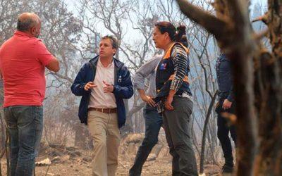 Intendente lidera trabajo en terreno en el combate de incendio forestal que afecta a la comuna de Navidad