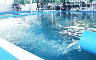 Termas del Flaco inaugura piscina termal techada