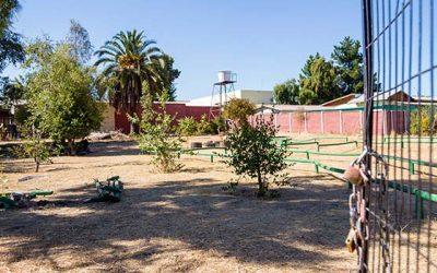 Comienzan trabajos de remodelación del parque René Schneider de San Fernando