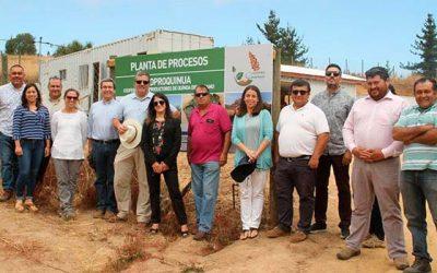 Cooperativa campesina realizó la primera venta de quínoa a concesionaria de la Junaeb