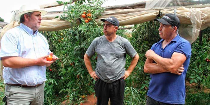Prodesal de Malloa entrega abonos orgánicos a pequeños productores para obtener mejores cultivos