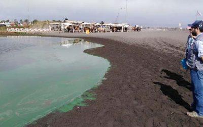 Confirma contaminación de Laguna Petrel de Pichilemu