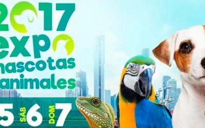 Expo Mascotas