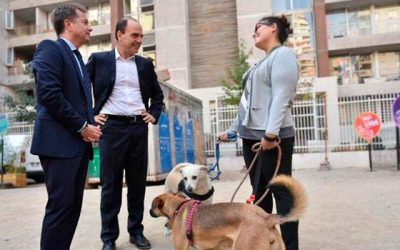 Minvu presenta medida que impide la prohibición de tenencia de mascotas en viviendas
