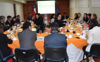 Presidente de la Corte de Apelaciones de Rancagua y subsecretaria de la niñez encabezan II mesa de trabajo interinstitucional de familia