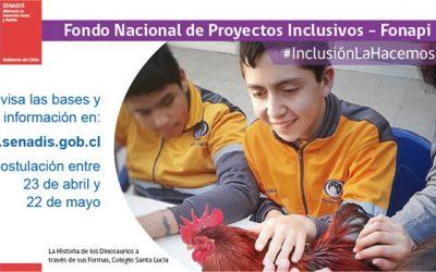 Senadis promueve postulación al Fondo Nacional de Proyectos Inclusivos 2019