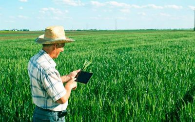 agricultura campo big data