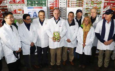 Inicio de exportaciones de peras a China