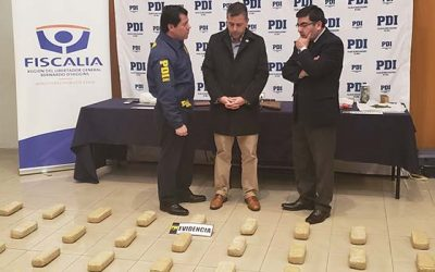 PDI efectúa múltiples allanamientos e incauta cerca de 58 kilos de drogas