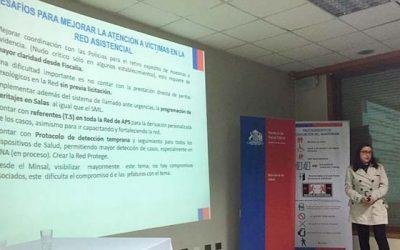 Modelo de Centro de Atención a Víctimas de O'Higgins es estudiado en Chiloé