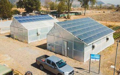 Proyecto UOH busca optimizar el uso de suelo agrícola y generar alternativas autosustentables