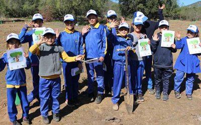 Alumnos de la escuela Valdebenito reforestan junto a Agrosuper