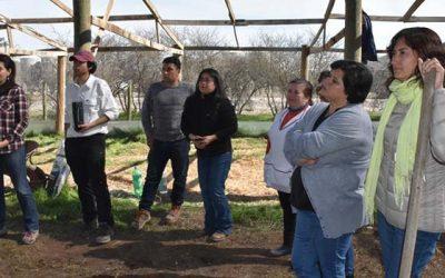 Proyecto piloto de Agrosuper permitirá plantar 10 mil árboles nativos en La Estrella