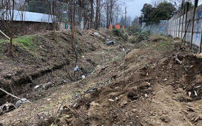 Trabajo de limpieza municipal arrasa con zarzamoras y basura de los canales en Graneros