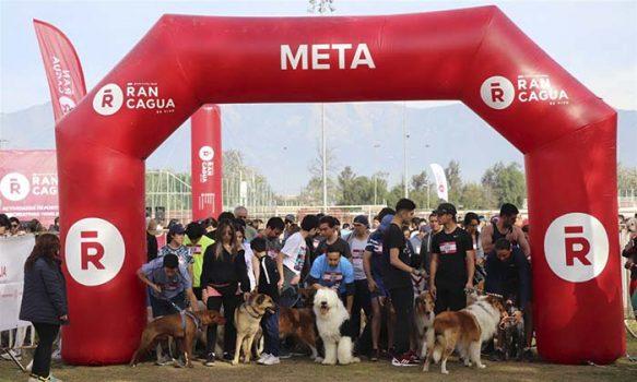 Cerca de dos mil personas participaron de la Cani Running 2019