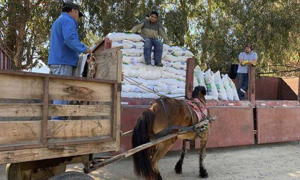 Más de 1.800 pequeños ganaderos ya han recibido forraje para sus animales