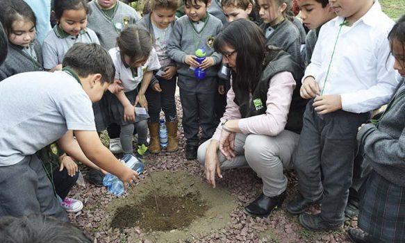 """""""Un trabajador Un árbol para Chile"""": INIA Rayentué realizó plantación de árboles en sector Los Choapinos"""