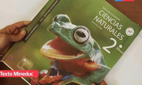 """Mineduc anuncia serie de mejoras en textos escolares 2020: """"Igual de buenos que particulares"""""""