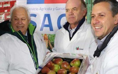 Pese al complejo escenario mundial: Exportaciones de O'Higgins crecen un 10% al final del tercer trimestre