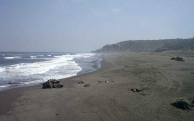 playa monaco