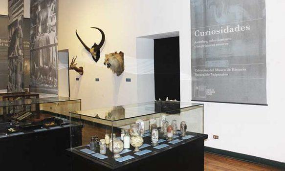 Curiosidades en el Museo Regional