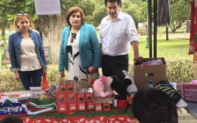 Programa Mujeres Jefas de Hogar impulsó feria navideña en Olivar