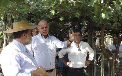 Ministro de agricultura insta a asociarse a pequeños productores vitivinícolas de Colchagua