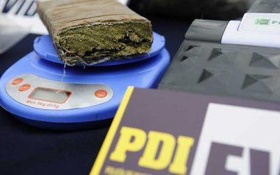 PDI desbarata centro de cultivo y venta de cannabis al interior de un domicilio en San Vicente