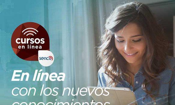 Sence y Movistar Chile lanzan 12 cursos en línea sin costo para mejorar las habilidades digitales
